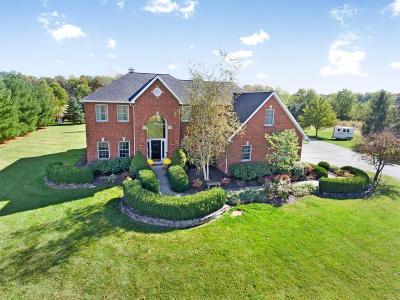 Sunbury Single Family Home For Sale: 6738 Blue Church Road