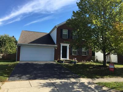 Grove City Single Family Home For Sale: 3568 Bluff Gap Drive
