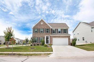 Pickerington Single Family Home For Sale: 253 Blue Jacket Circle