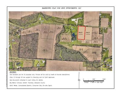 Residential Lots & Land For Sale: Center Village Road #13