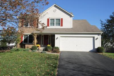 Canal Winchester Single Family Home Contingent Finance And Inspect: 6592 Brick Court