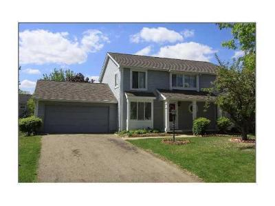 Hilliard Single Family Home For Sale: 5394 Carina Court