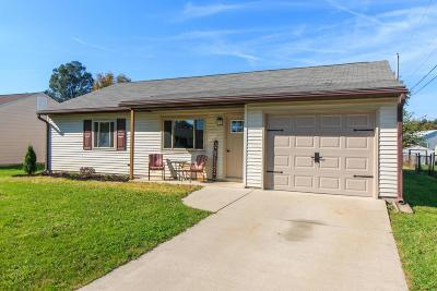 Single Family Home For Sale: 369 Sheryl Drive