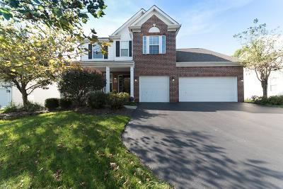 Westerville Single Family Home For Sale: 407 Mill Wind Drive