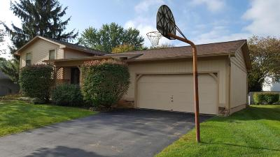 Westerville Single Family Home For Sale: 179 Nicole Drive