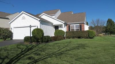 Westerville Single Family Home For Sale: 5461 Country Meadow Court