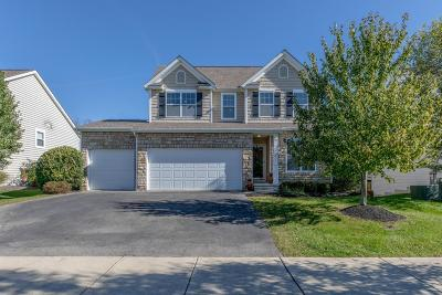 Delaware Single Family Home For Sale: 187 Winding Valley Drive