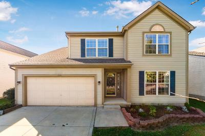 Single Family Home For Sale: 1179 Harley Run Drive
