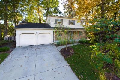 Delaware Single Family Home For Sale: 153 Cottswold Drive