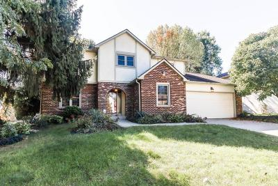 Westerville Single Family Home For Sale: 713 Paddlewheel Drive