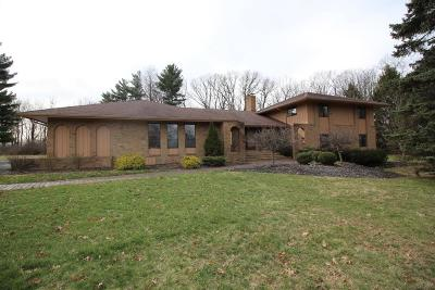 Westerville Single Family Home For Sale: 4553 Ravine Drive