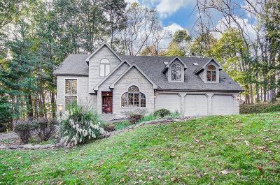 Newark Single Family Home For Sale: 1259 Stratford Woods Drive
