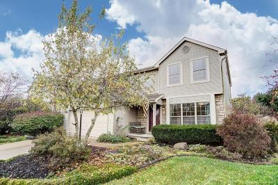 Canal Winchester Single Family Home Contingent Finance And Inspect: 6677 Laburnum Drive