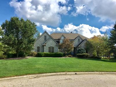Dublin Single Family Home Contingent Finance And Inspect: 6243 Inverurie Drive W