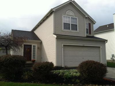 Single Family Home For Sale: 5191 Algean Drive