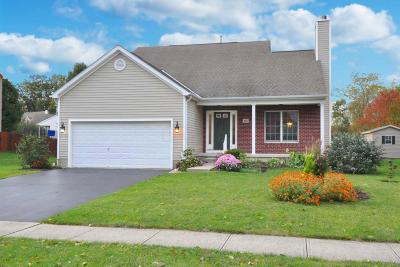 Grove City Single Family Home Contingent Finance And Inspect: 650 Hennigans Grove Road