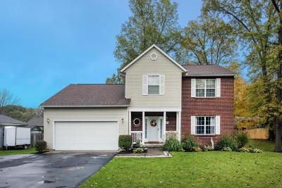 Etna Single Family Home Contingent Finance And Inspect: 107 Carnation Place SW