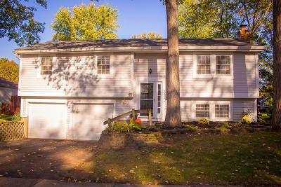 Powell Single Family Home Contingent Finance And Inspect: 2338 Hartsdale Drive