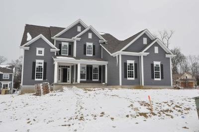 Westerville Single Family Home For Sale: 4963 Tralee Lane #Lot 8058
