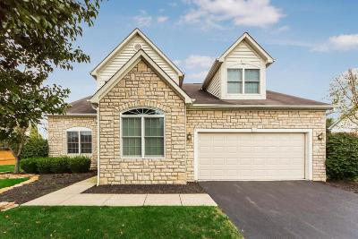 Westerville Single Family Home For Sale: 6605 Hermitage Drive