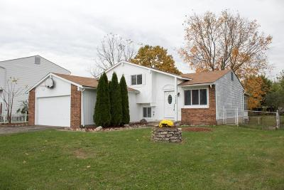 Groveport Single Family Home Contingent Finance And Inspect: 3724 Big Walnut Drive