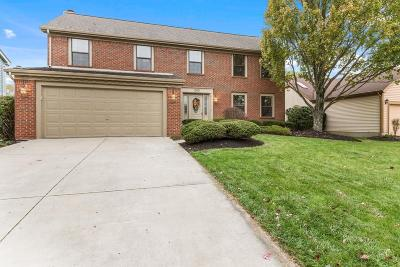 Powell Single Family Home Contingent Finance And Inspect: 290 Highmeadows Village Drive
