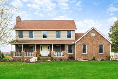 Johnstown Single Family Home For Sale: 9111 Clover Valley Road