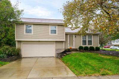 Dublin Single Family Home Contingent Finance And Inspect: 3086 Aleshire Drive