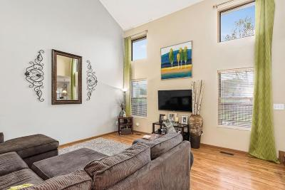 Single Family Home For Sale: 532 Tourmaline Drive