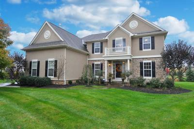 Lewis Center Single Family Home For Sale: 6888 Jennifer Ann Drive