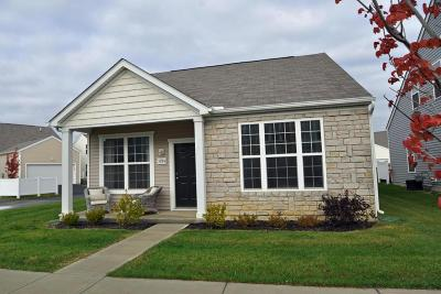 Dublin Single Family Home Contingent Finance And Inspect: 5784 Passage Creek Drive