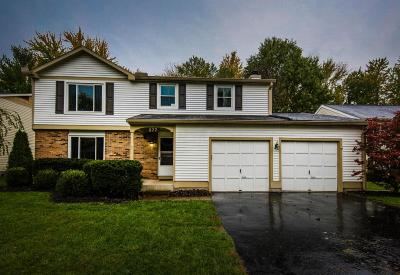 Gahanna Single Family Home Contingent Finance And Inspect: 377 Forestwood Drive