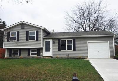 Dublin Single Family Home Contingent Finance And Inspect: 3156 Strathburn Court
