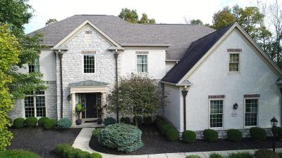 Dublin Single Family Home For Sale: 6549 Ballantrae Place