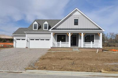 Dublin Single Family Home For Sale: 6424 Dicesare Loop #Lot 61