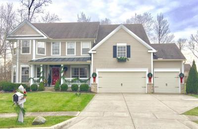 Single Family Home For Sale: 369 Nesting Court