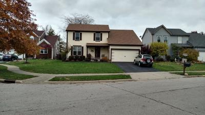 Reynoldsburg Single Family Home Contingent Finance And Inspect: 8366 Lucerne Drive