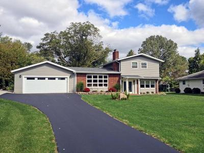 Hilliard Single Family Home For Sale: 3880 Schirtzinger Rd Road
