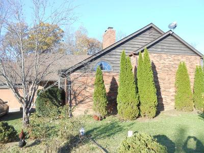 Grove City Single Family Home For Sale: 3209 Holt Road