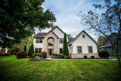 Westerville Single Family Home Contingent Finance And Inspect: 7444 Hawksbeard Drive
