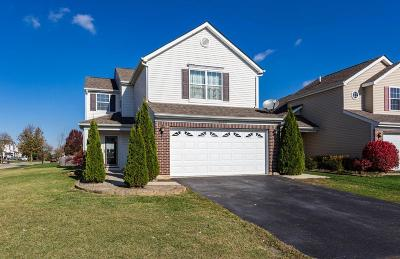Hilliard Single Family Home For Sale: 5840 Annmary Road