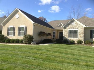 Blacklick Single Family Home For Sale: 1824 Hannah Farms Court