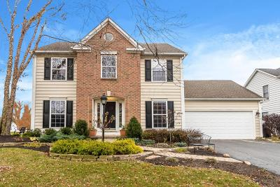 Westerville Single Family Home For Sale: 5920 Pine Wild Drive