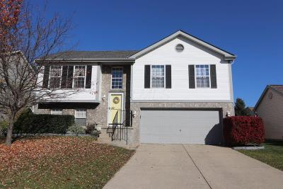 Hilliard Single Family Home Contingent Finance And Inspect: 2384 Walborn Drive