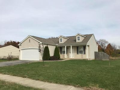 Single Family Home For Sale: 1446 Willow View Drive