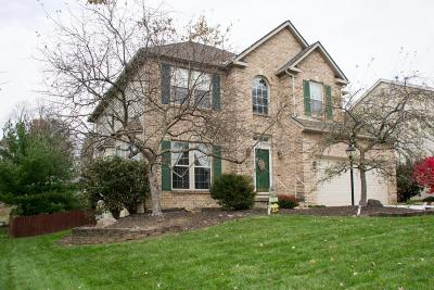 Reynoldsburg Single Family Home Contingent Finance And Inspect: 7862 Astra Circle