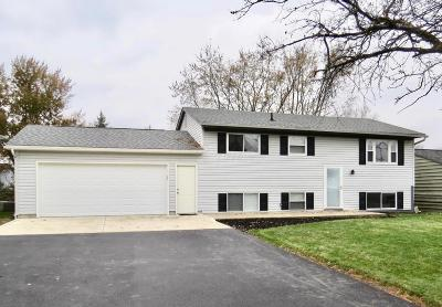 Single Family Home Contingent Finance And Inspect: 1032 State Route 142 NE