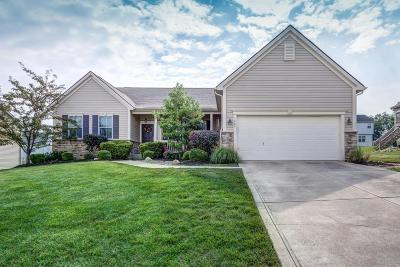 Canal Winchester Single Family Home Contingent Finance And Inspect: 7564 Murdock Lane