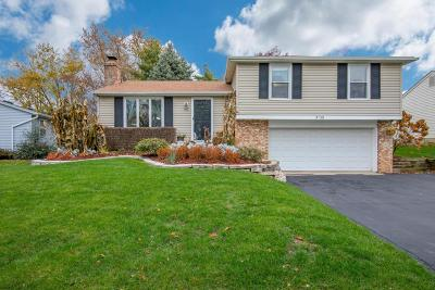 Dublin Single Family Home For Sale: 3136 Frobisher Avenue
