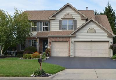 Delaware Single Family Home For Sale: 717 Stonewater Court
